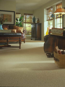 Carpet Flooring In Davenport
